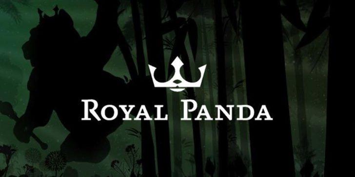 Royal Panda 249448