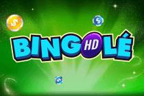 Bingo online 511921